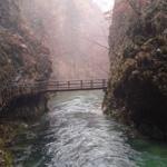 travel-slovenia-blejski-vintgar-view