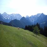 travel-slovenia-krajinski-park