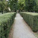 travel-slovenia-mestni-park