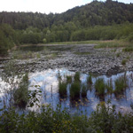 travel-slovenia-ribniki-view