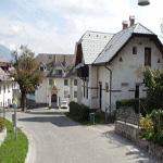 travel-slovenia-bled-vas-grad-view