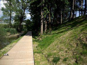 Lesena peš pot v parku