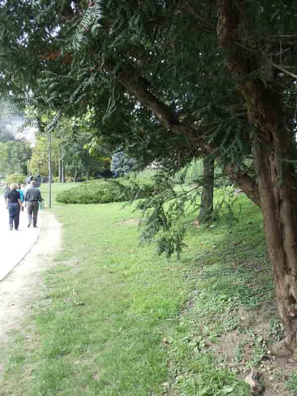 travel-slovenia-park-bled
